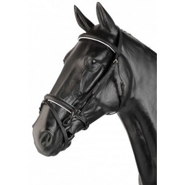 Double Rein English Halter