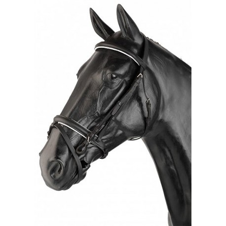 English Vilches Single Rein Halter