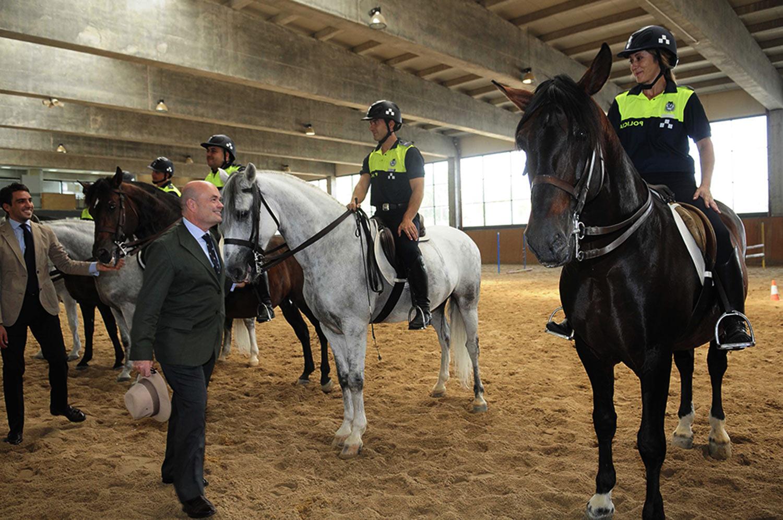 caballos-de-policia